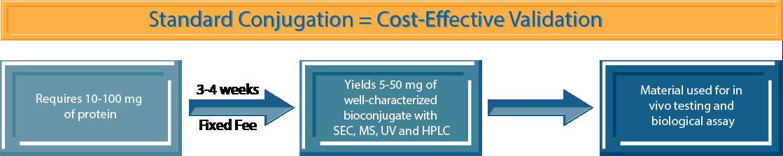 Standard Conjugation - Cost-Effective Validation