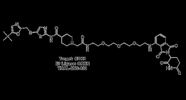 Target: CDK9 - E3 Ligase: CRBN - THAL-SNS-032