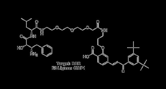 Target: RAR - E3 Ligase: cIAP1