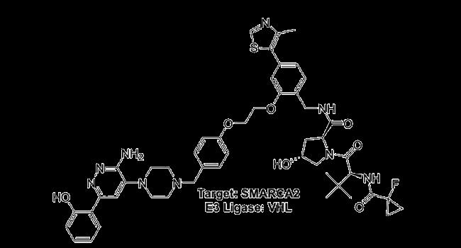 Target: SMARCA2 - E3 Ligase: VHL