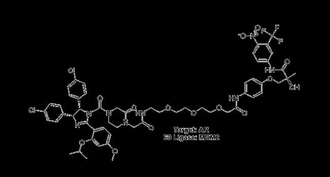 Target: AR - E3 Ligase: MDM2